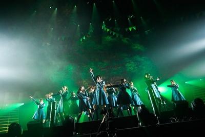 """欅坂46""""4月6日は特別な日!""""欅の木の下で1周年バースデー♪"""