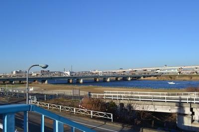 堀切駅の歩道橋から見た荒川土手周辺が、「金八先生」の舞台となった場所