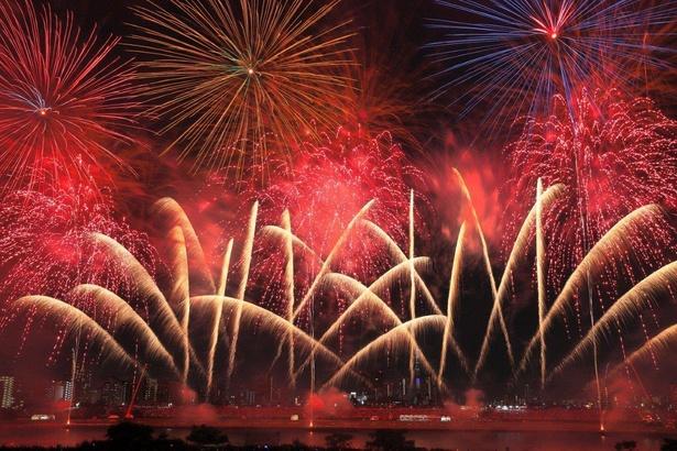 荒川の河川敷各所で、バリエーション豊富な花火を堪能できる / 足立の花火
