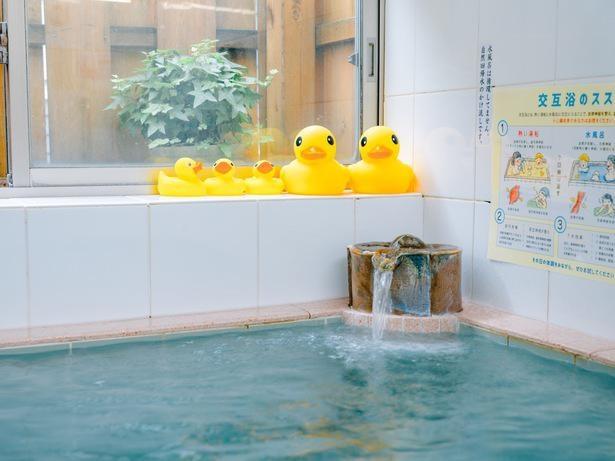 16度の地下水を掛け流しで使用する、小杉湯の水風呂