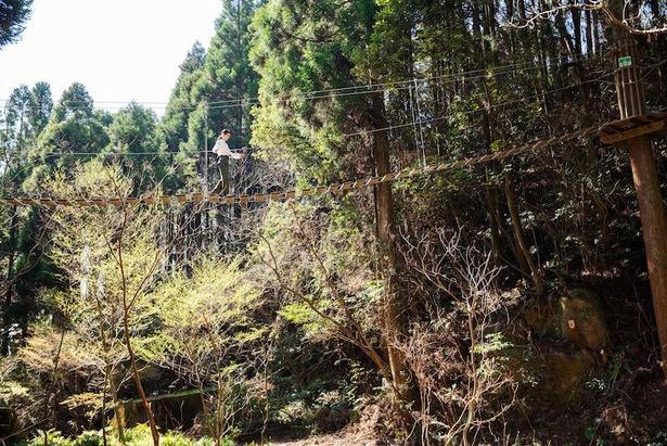 広大な敷地を生かした、開放感抜群のパーク(アドベンチャーバレーSAGA)