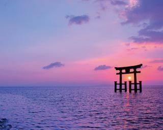 琵琶湖や並木道の絶景に感動!地元グルメも満喫する滋賀県・湖西エリアのドライブ
