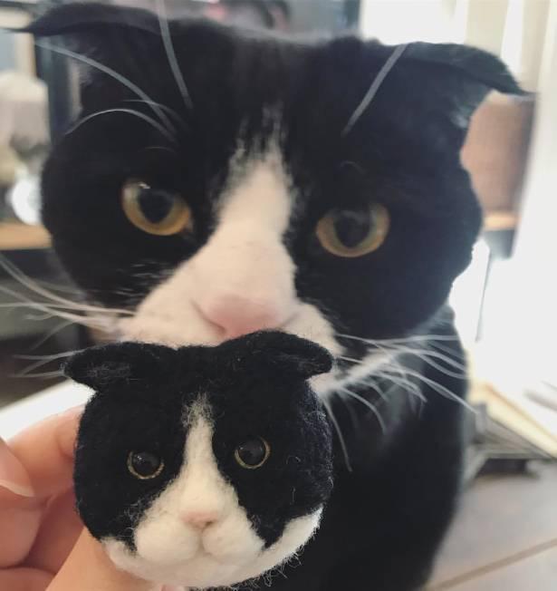 【写真】作品とモデル猫とのツーショット。あまりにそっくりで驚く