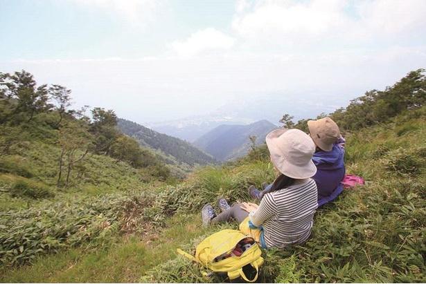 伊吹笹におおわれた登山道横で休憩