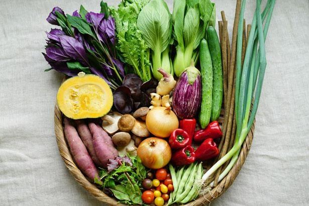 クール便料金なしで野菜を宅配/坂ノ途中