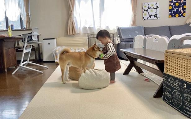 1歳の娘さんと一緒に遊ぶりんご郎くん