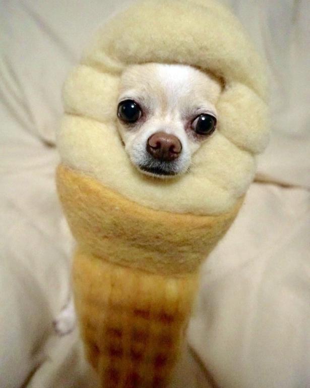 「ソフトクリームになっちゃった!」