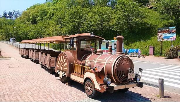 見た目が機関車のような周遊バス「ロードトレイン」