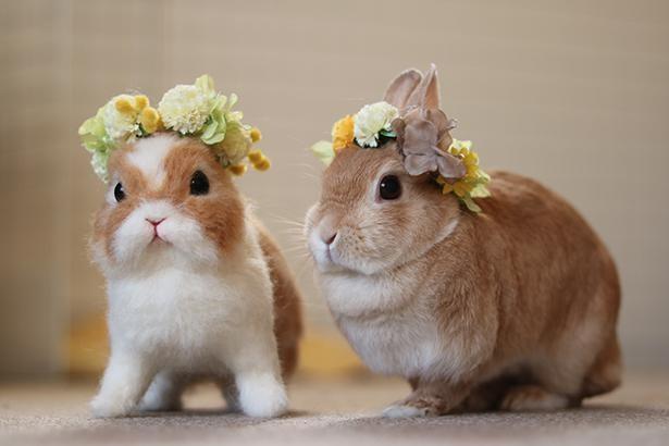 おそろいの花冠が素敵!