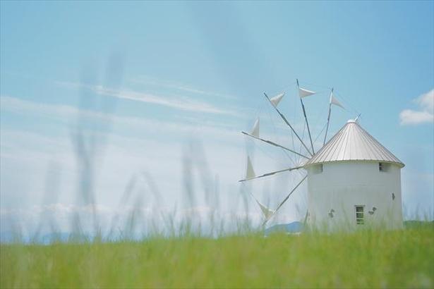まるで地中海のような風景を作り出しているギリシャ風車