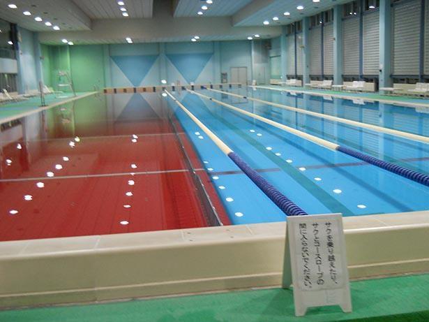 トレーニングに最適な室内の50メートルプール