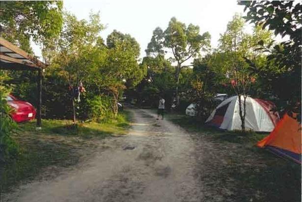 満天の星空が楽しめるオートキャンプ
