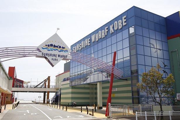 海に隣接した施設でショッピングやイベントを楽しめる