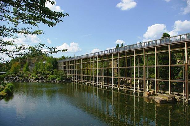 水面から10メートルの高さの観月橋から庭園から一望できる