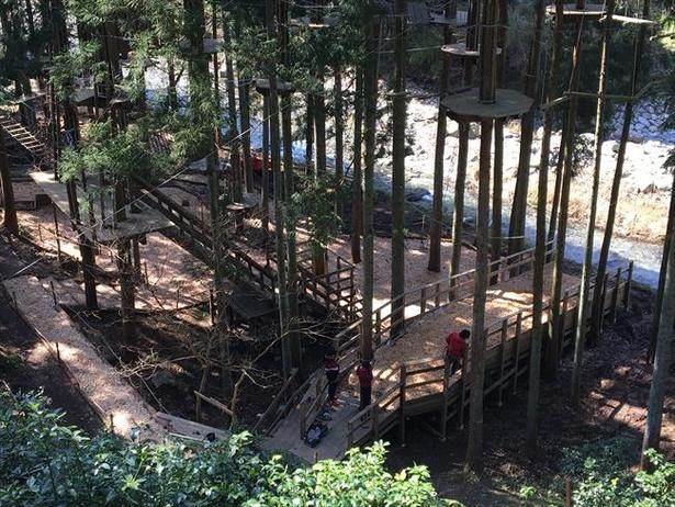 【写真】森林の中に作られたコースで思いっきり体を動かせる