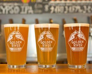 和歌山観光で飲みたい地ビール5選!おすすめや販売店を紹介