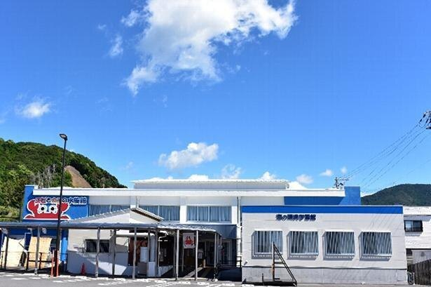 世界で唯一のエビ&カニ専門水族館