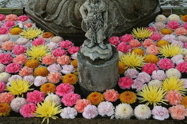 アジサイやキクなどの花に囲まれる威厳ある不動明王(お不動さん)