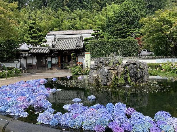 「花と緑と文化財」の寺として、国指定重要文化財の楼門や阿弥陀如来坐像も有名