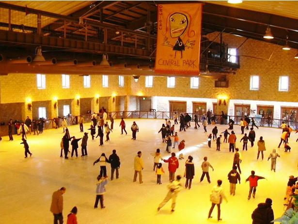全天候型の屋内スケートリンク「アイスパーク」
