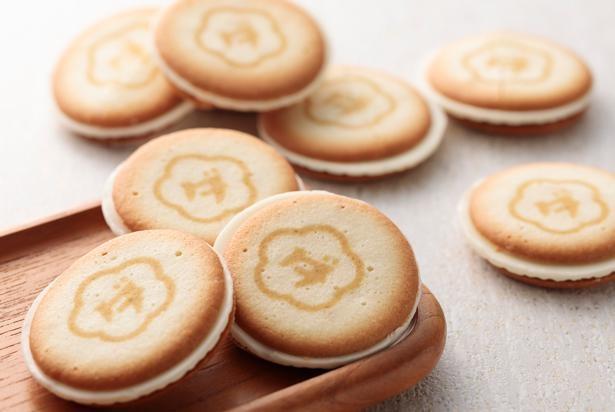 【写真】ウメダチーズラボのクッキー