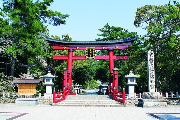 朱色が緑に映える大鳥居は高さ10.9メートル。神社は「けいさん」の愛称で呼ばれ、市民に親しまれている/北陸道総鎮守氣比神宮
