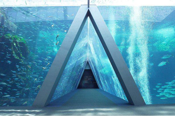 親潮と黒潮の潮目をイメージした三角トンネル