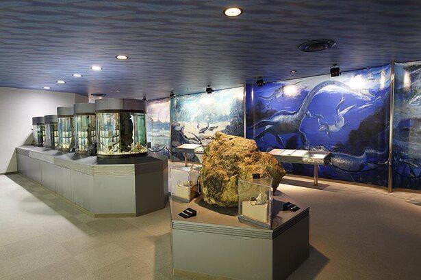 「古代水族館」では海の生き物の歴史に触れることができる