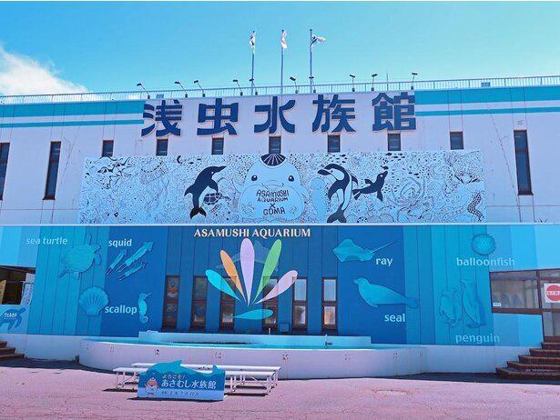 浅虫水族館正面には2020年7月28日から、青森県を拠点に活動するアーティスト・GOMAが制作した高さ3メートル×長さ17メートルのコラボアート横断幕が飾られている