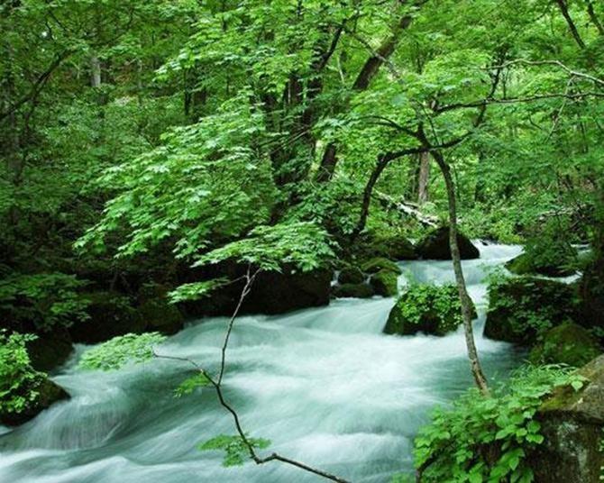大自然の中で心も体もリフレッシュ!全国のおすすめ絶景スポット10選