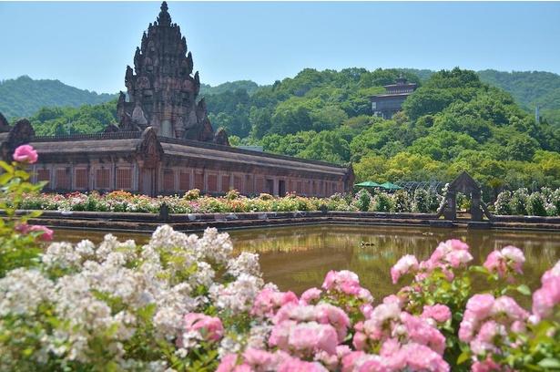 季節の花が咲き誇る「レオマ花ワールド」。春と秋には、中四国最大級となる10万本の「大バラまつり」などイベントも実施