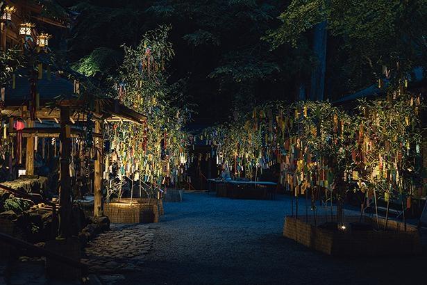 笹が並ぶ境内/貴船神社