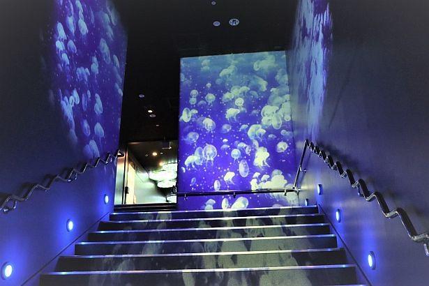クラゲが漂う様子を表現したプロジェクションマッピングによる階段演出