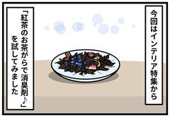 おうちのトイレをおしゃれに消臭!「紅茶の茶がら消臭剤」を作ってみた:人気ブロガーくりこさんが【やってみた】