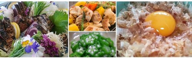 高知の食材セットで簡単料理が作れる