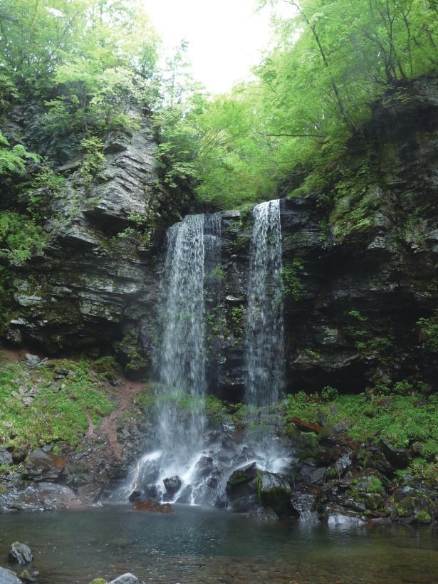 夫婦滝と長良川源流湧水(岐阜県郡上市)