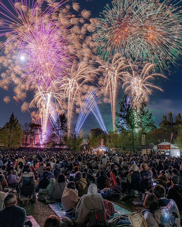 無病息災への願いを込めて、「おかやまフォレストパーク ドイツの森」で花火大会を開催