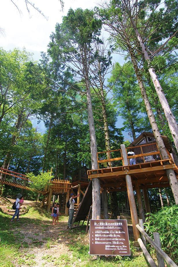 木で作られた遊具が並ぶキッズワールド。ログハウスやブランコなどが自然と調和している /「富士見台高原ロープウェイ ヘブンスそのはら」