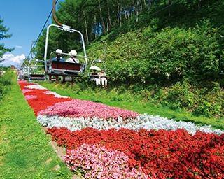 100万輪もの花々をペアリフトから見下ろす!長野県阿智村で絶景と温泉を満喫するドライブ