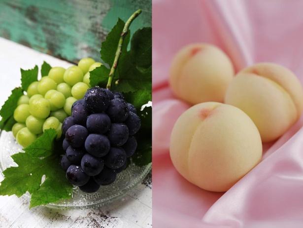 恵まれた自然条件で栽培された岡山のフルーツは、国内はもちろん海外からも高い評価を受ける