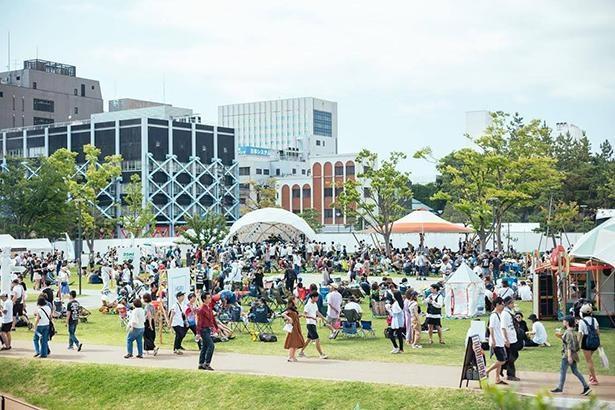 地方発のローカルフェスも近年増加中。写真は福井県初の本格野外フェス「ワンパークフェスティバル」