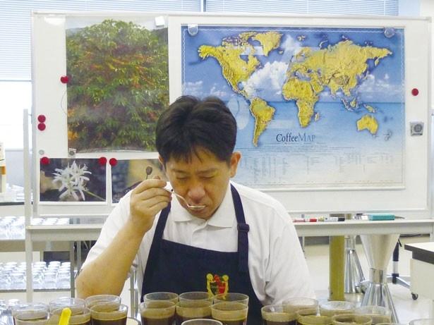 基準を満たすコーヒー豆かどうか、クラシフィカドール(コーヒー鑑定士)が品質検査を行う様子を見学/UCC 六甲アイランド工場