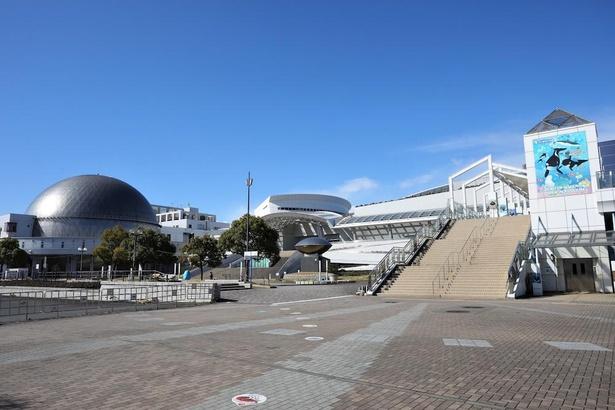 名古屋港ガーデンふ頭には、名古屋港水族館のほか、展望室、海洋博物館、南極観測船ふじなどが集まっている