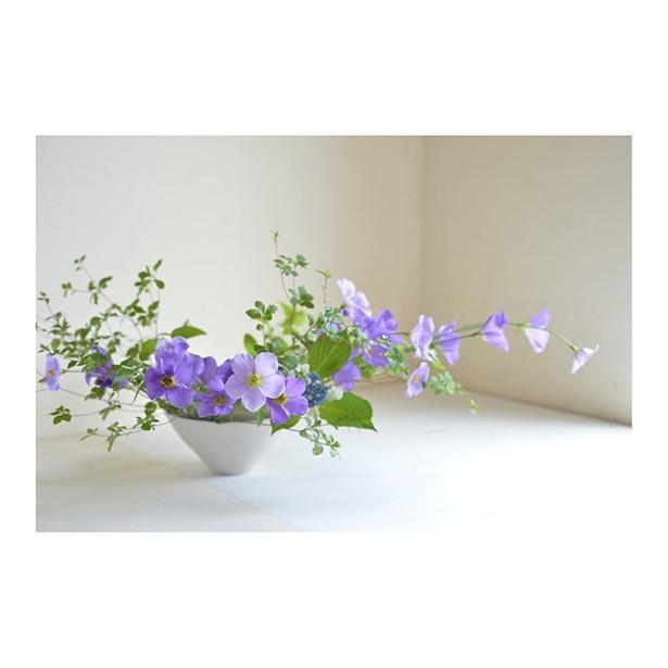 トルコキキョウ、ドウダンツツジ、額紫陽花(がくあじさい)