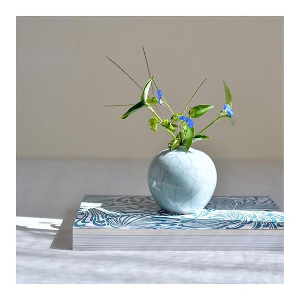 露草(つゆくさ)の青色と、小物の青色がマッチ