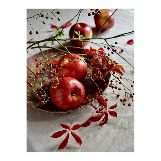 野バラの実、リンゴ
