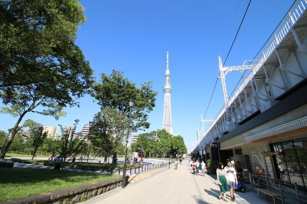 東京ミズマチ(R)のウエストゾーンには隅田公園が隣接