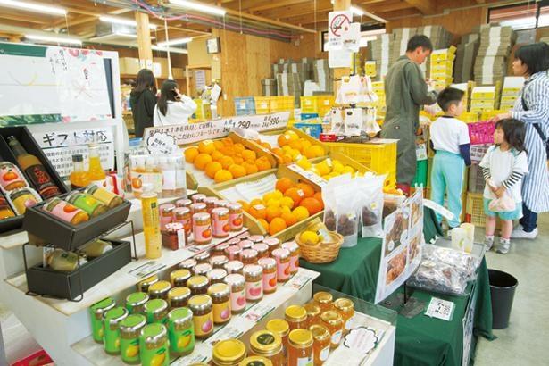 ショップではもぎたての果実や、ジャムなどの加工品を販売/藤桃庵