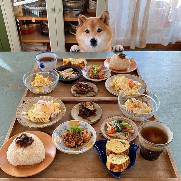 まるでゆずちゃんと食べてるみたい!