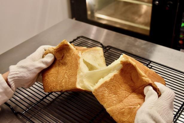 出来立てのパンが美味しそう